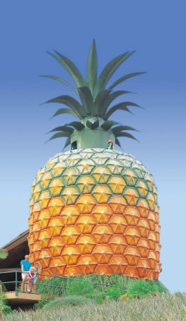The Big Pineapple - Tourism TAS