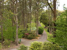 Mount Lofty Botanic Garden - Tourism TAS