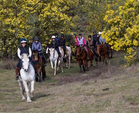 Burnelee Excursions on Horseback - Tourism TAS