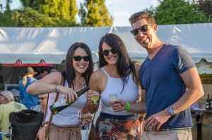 Stanthorpe Apple and Grape Harvest Festival - Tourism TAS